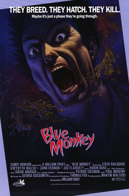 SassyFlix | Blue Monkey