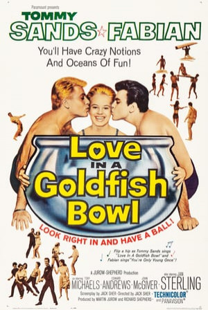 SassyFlix | Love in a Goldfish Bowl