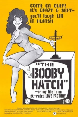 SassyFlix | The Booby Hatch