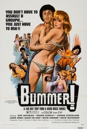 SassyFlix | Bummer