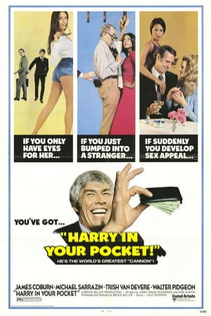 SassyFlix | Harry in Your Pocket