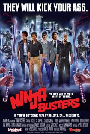 SassyFlix | Ninja Busters