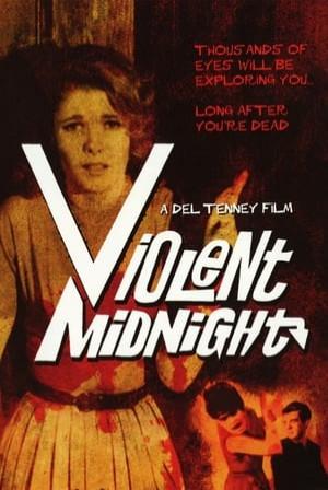 SassyFlix | Violent Midnight