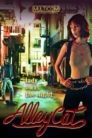 SassyFlix | Alley Cat