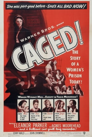 SassyFlix | Caged