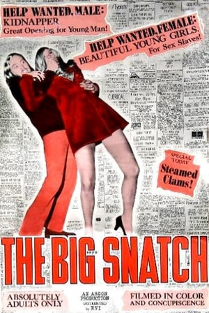 SassyFlix | The Big Snatch