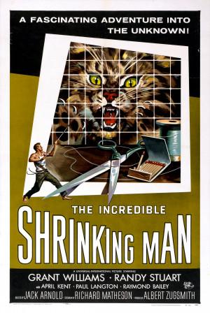 SassyFlix | The Incredible Shrinking Man