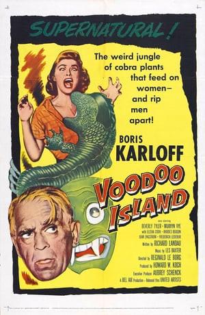 SassyFlix   Voodoo Island