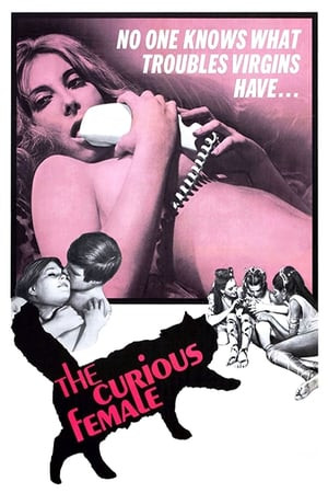 SassyFlix | The Curious Female
