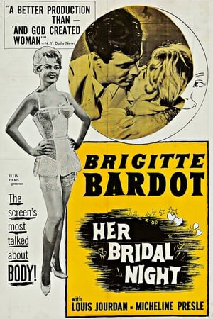 SassyFlix | Her Bridal Night
