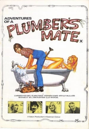 SassyFlix | Adventures of a Plumber's Mate