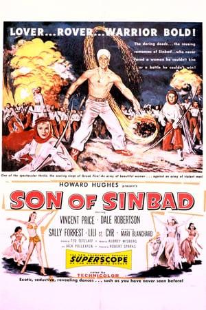 SassyFlix   Son of Sinbad