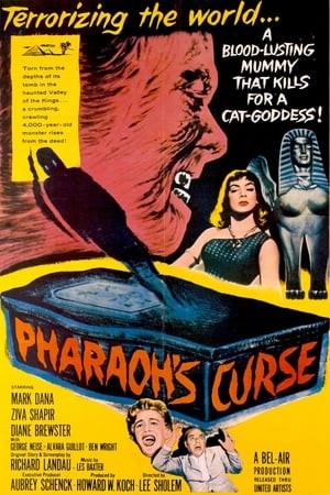 SassyFlix | Pharaoh's Curse