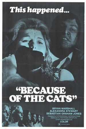 SassyFlix | Because of the Cats