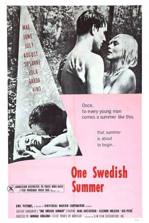 SassyFlix | One Swedish Summer