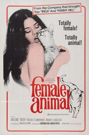 SassyFlix | Female Animal