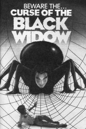 SassyFlix | Curse of the Black Widow