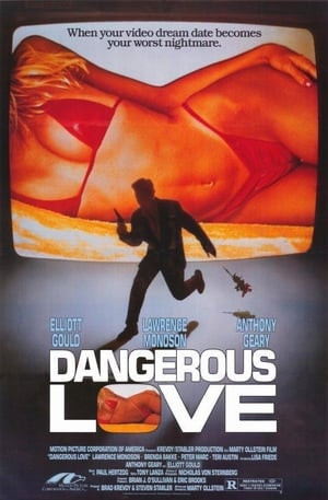 SassyFlix | Dangerous Love