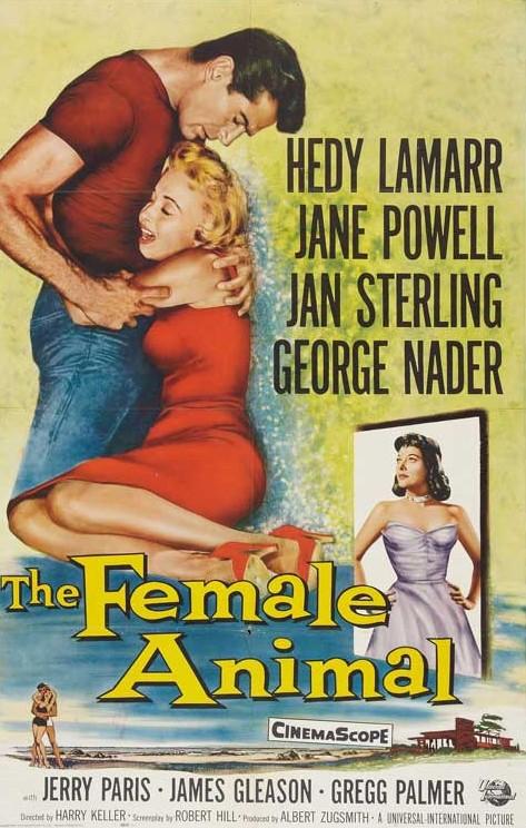 SassyFlix | The Female Animal