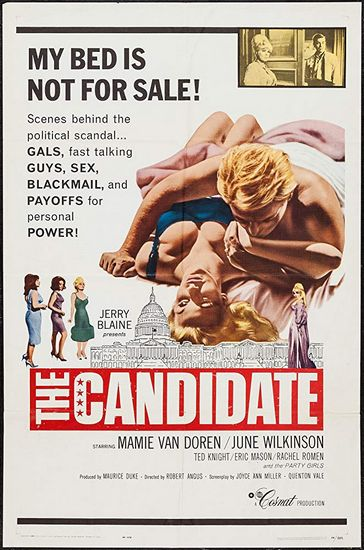SassyFlix | The Candidate