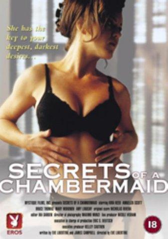 SassyFlix | Secrets of a Chambermaid