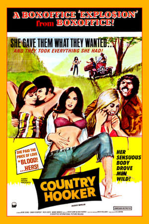 SassyFlix | Country Hooker