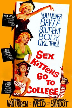 SassyFlix | Sex Kittens Go to College