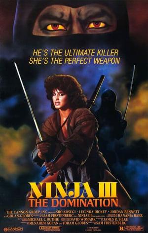 SassyFlix | Ninja III: The Domination