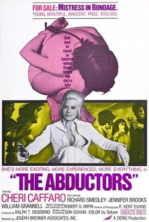 SassyFlix | The Abductors