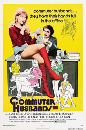 SassyFlix | Commuter Husbands