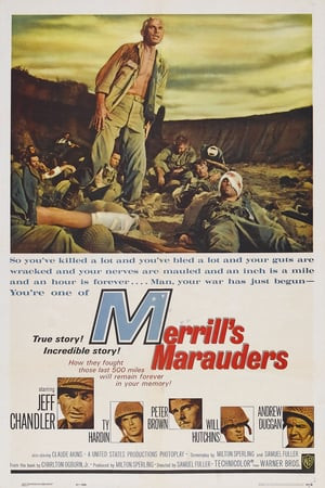 SassyFlix | Merrill's Marauders