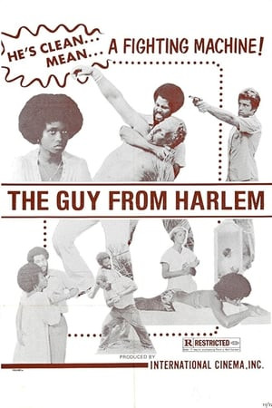 SassyFlix | The Guy From Harlem