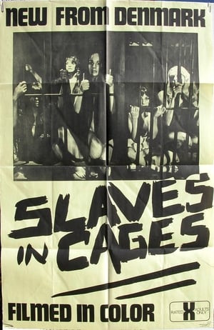 SassyFlix | Slaves in Cages