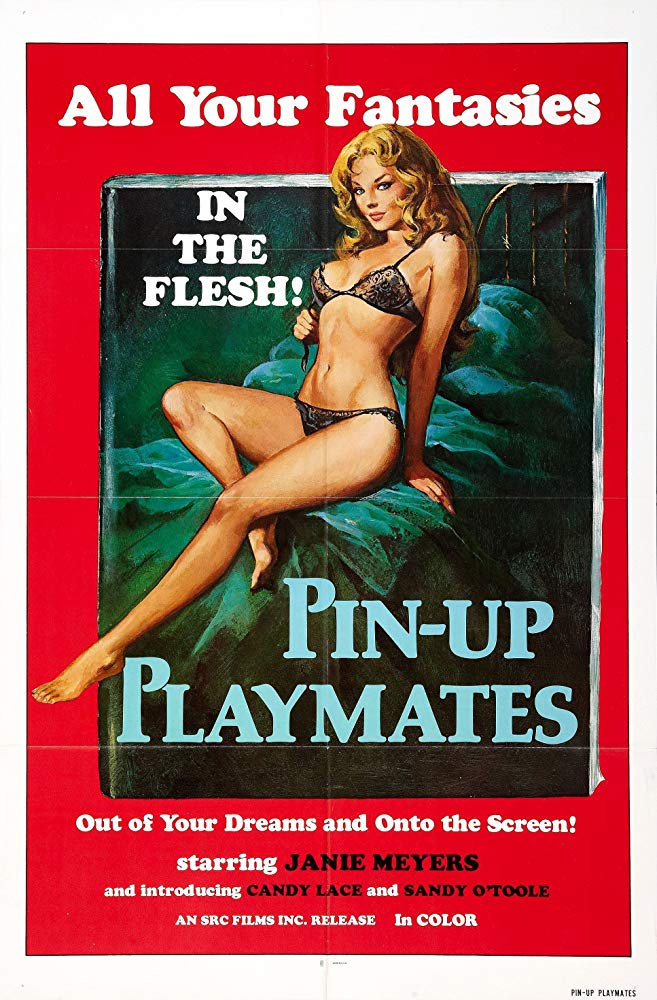 SassyFlix | Pin-up Playmates aka Vacation Temptations