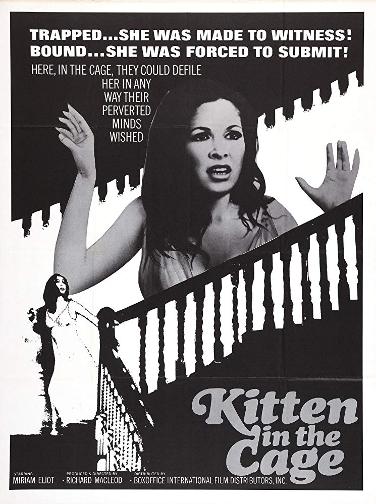 SassyFlix | Kitten in a Cage